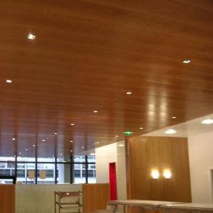 Marotte -  - Ceiling Tile