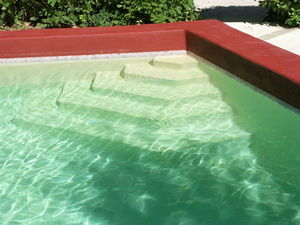 Aqua Soft Company -  - Pool Stair
