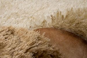 NAZAR - tapis diva 120x170 caramel - Moderner Teppich