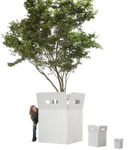Flora - box - Baumtopf