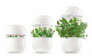 Bosch - smartgrow - Verbundenes Zimmergarten