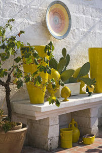 ENZA FASANO -  - Garten Blumentopf
