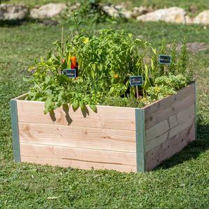 GAMM VERT -  - Gartenkasten