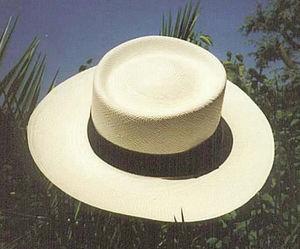 Ecua-Andino - panama dumont - Panamahut