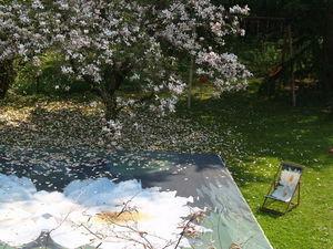 Tiki concept - grille papillon - Personalisierte Pool Abdeckung