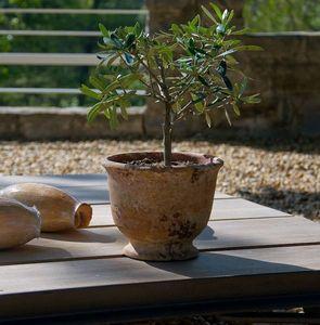 Le Chêne Vert -  - Garten Blumentopf