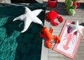 Außensitzkissen-MX HOME-Etoile de mer