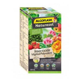 ALGOFLASH - Insektenpulver-ALGOFLASH-Vegetal