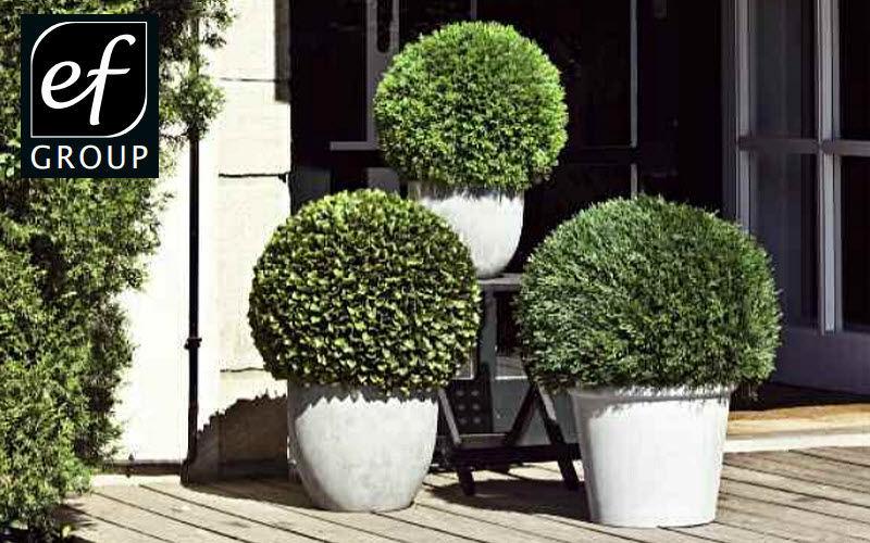Euroflor Árbol artificial Árboles & plantas Flores y Fragancias  |