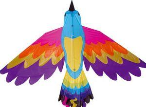 La Maison Du Cerf-Volant - oiseau de paradis - Cometa