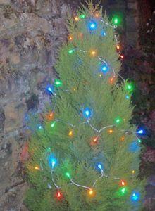 FEERIE SOLAIRE - guirlande solaire 60 leds multicolores à clignotem - Guirnalda Luminosa