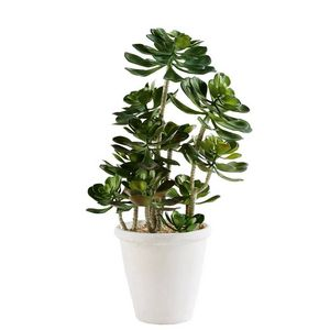 MAISONS DU MONDE - plante artificielle 1420096 - Planta Artificial