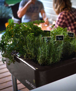 FRENCH GARDEN - potager mobile french garden classic noir - Giardino Per Interni