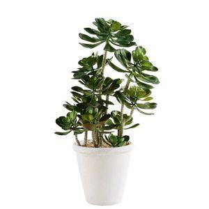 MAISONS DU MONDE - plante artificielle 1420096 - Pianta Artificiale